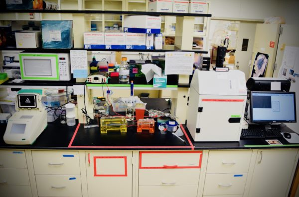 Lab counter and shelves with various chemicals, an incubator, and a computer.