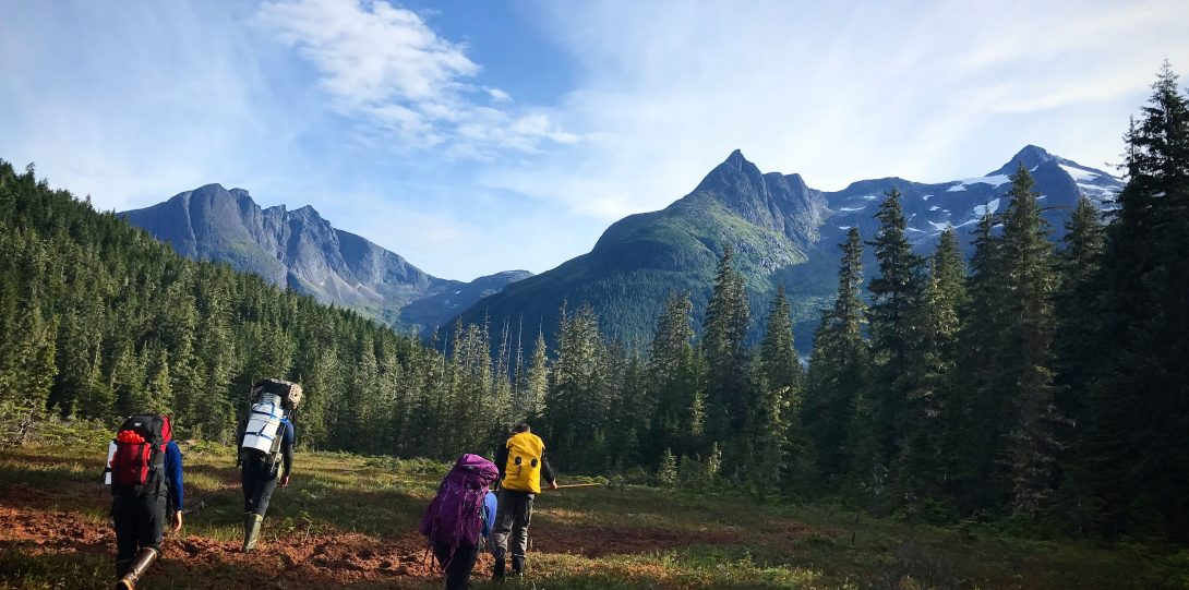 Scientists hiking in Juneau, Alaska with backpacks.  People are in a field with trees and mountains in the background