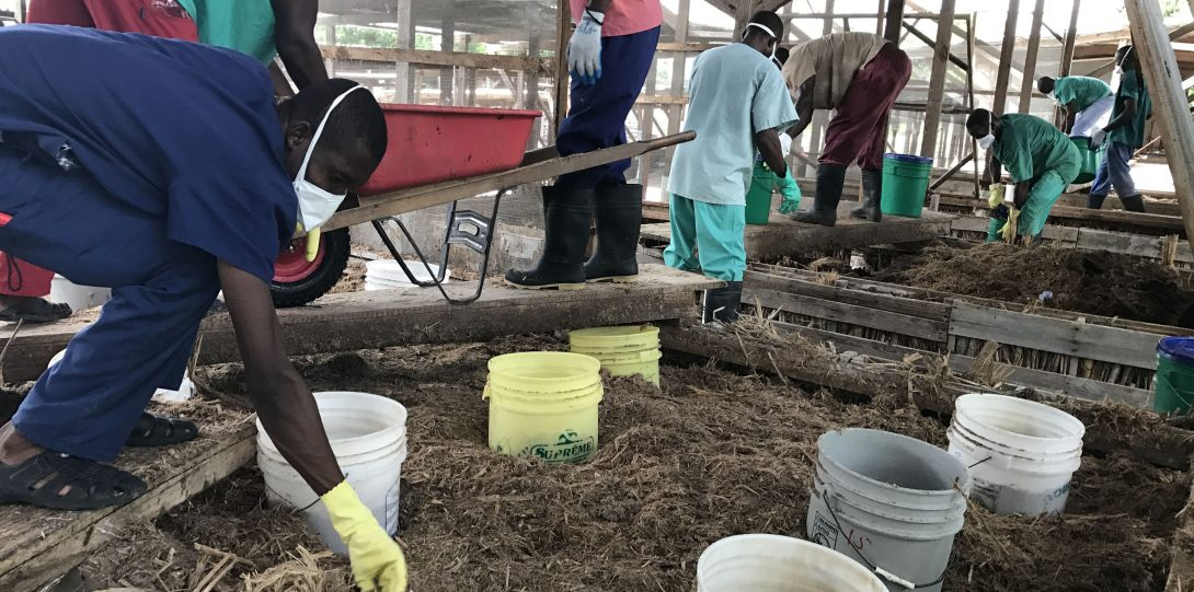Group of people setting up soil experiment outside with various troughs and buckets.
